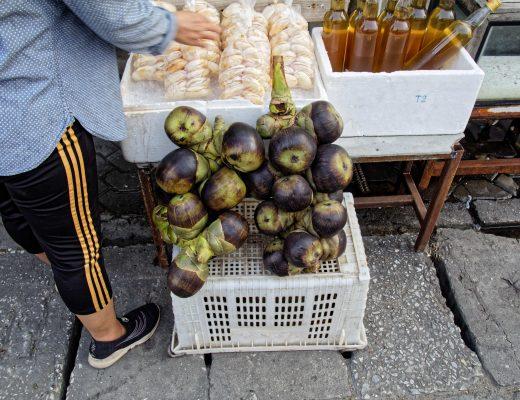 Fruit du Palmier de Palmyre ou Taals – fruit exotique en Thaïlande